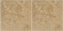 Керамогранит KERRANOVA коллекция Shakespeare  Beige Brown k-4002sr 600x600